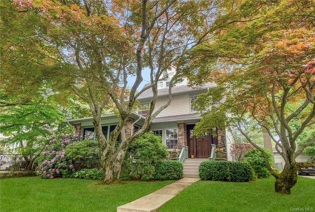 12 Thompson Place, Mamaroneck, NY 10538 (MLS #H6017823) :: Cronin & Company Real Estate