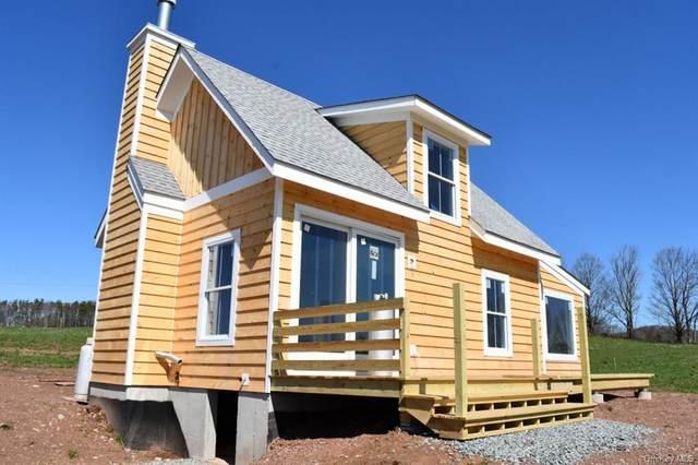 66 Kratz Road, Delaware, NY 12723 (MLS #H6018110) :: Signature Premier Properties