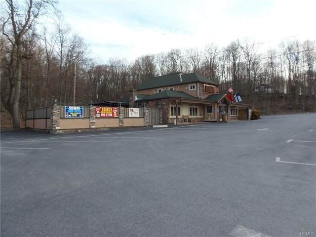 590 State Route 208, Blooming Grove, NY 10950 (MLS #H6018677) :: William Raveis Baer & McIntosh