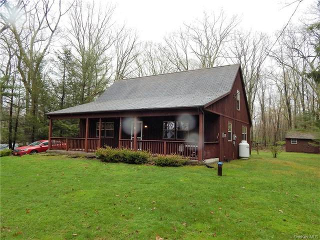 36 Wolf Pond Road, Mamakating, NY 12790 (MLS #H6019559) :: William Raveis Baer & McIntosh