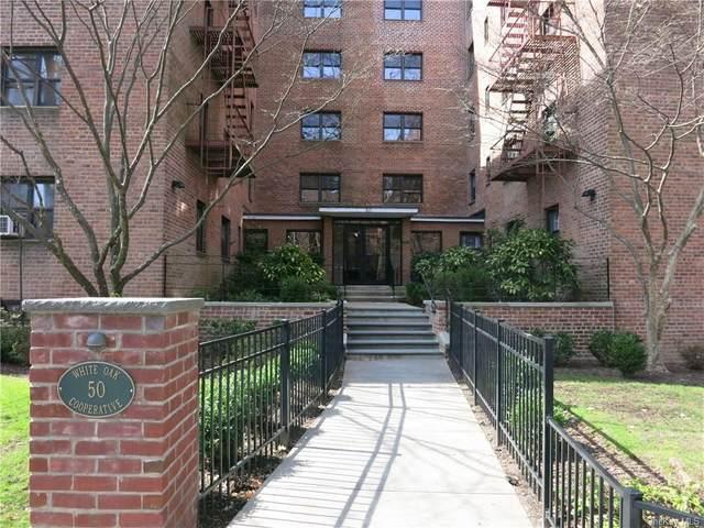 50 White Oak Street 1E, New Rochelle, NY 10801 (MLS #H6020636) :: Signature Premier Properties