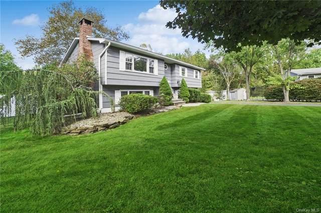 13 Wolf Place, Nanuet, NY 10954 (MLS #H6023669) :: Signature Premier Properties