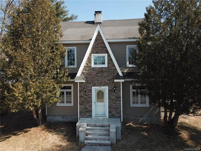 108 Horseshoe Lake Road, Bethel, NY 12720 (MLS #H6024189) :: William Raveis Baer & McIntosh