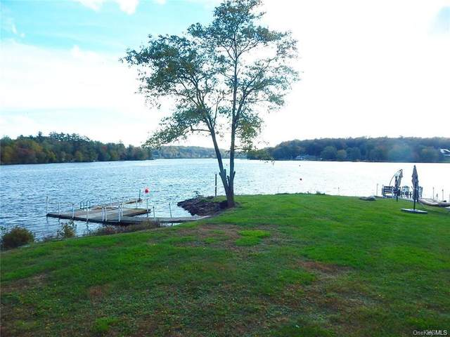 29 Horseshoe Lake Road #1, Kauneonga Lake, NY 12749 (MLS #H6024248) :: William Raveis Baer & McIntosh