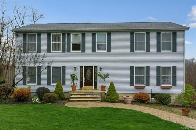 21 Blossom Lane, Patterson, NY 10509 (MLS #H6024979) :: RE/MAX Edge