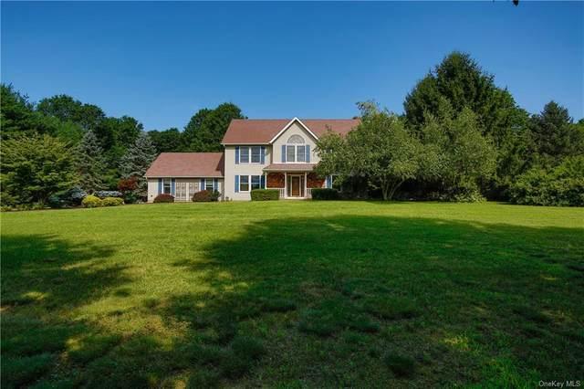 7 Birchwood Court, Washingtonville, NY 10992 (MLS #H6025336) :: Cronin & Company Real Estate