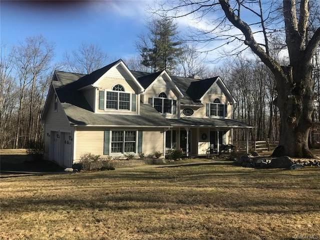 94 S Mountain Road, Gardiner, NY 12589 (MLS #H6025400) :: Cronin & Company Real Estate