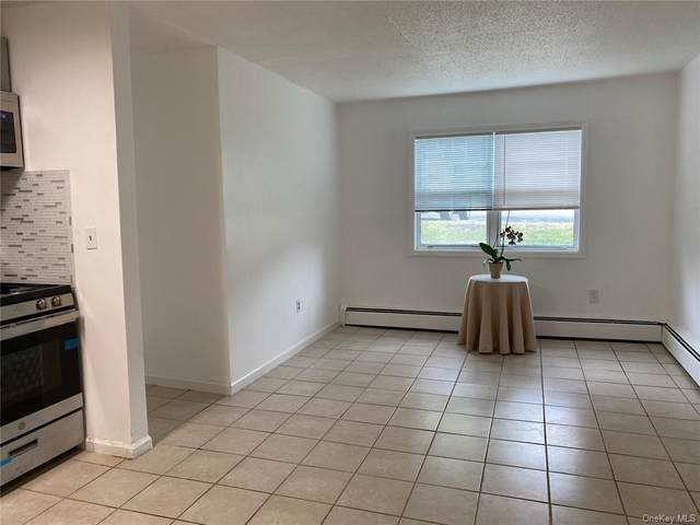 8 Barclay Manor #101, Newburgh, NY 12553 (MLS #H6026724) :: Carollo Real Estate