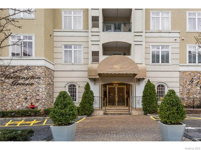 410 Westchester Avenue #313, Port Chester, NY 10573 (MLS #H6027221) :: Cronin & Company Real Estate