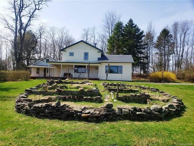 78 Harden Road, Bethel, NY 12734 (MLS #H6028479) :: Cronin & Company Real Estate