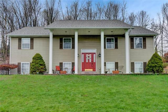 20 Maple Avenue, Goshen Town, NY 10924 (MLS #H6029024) :: Cronin & Company Real Estate