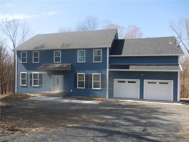 105 State Route 208, New Paltz, NY 12561 (MLS #H6029236) :: Cronin & Company Real Estate