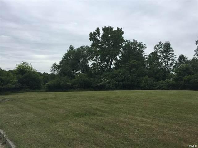 8 Gumwood Drive, Goshen Town, NY 10924 (MLS #H6031497) :: William Raveis Baer & McIntosh