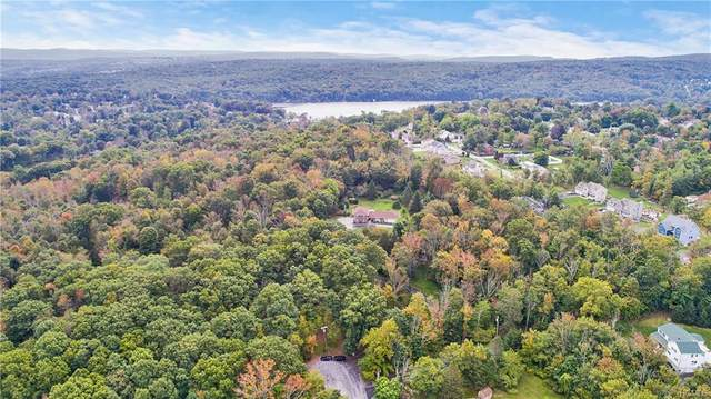 Fernglade Court, Monroe Town, NY 10950 (MLS #H6031639) :: William Raveis Legends Realty Group