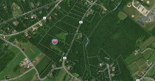 County Route 22 Lot #1, Wawayanda, NY 10973 (MLS #H6031676) :: William Raveis Legends Realty Group