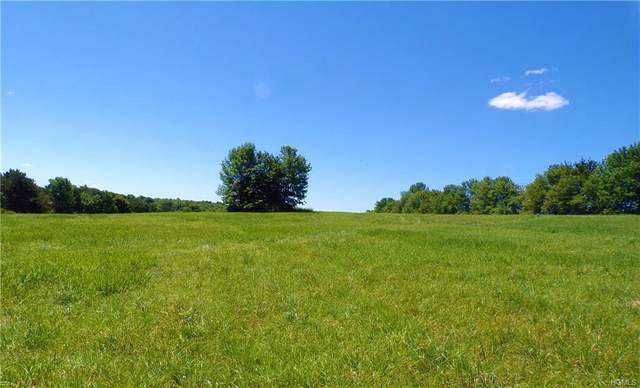 Hessinger Lare Road, Callicoon, NY 12791 (MLS #H6031998) :: William Raveis Legends Realty Group