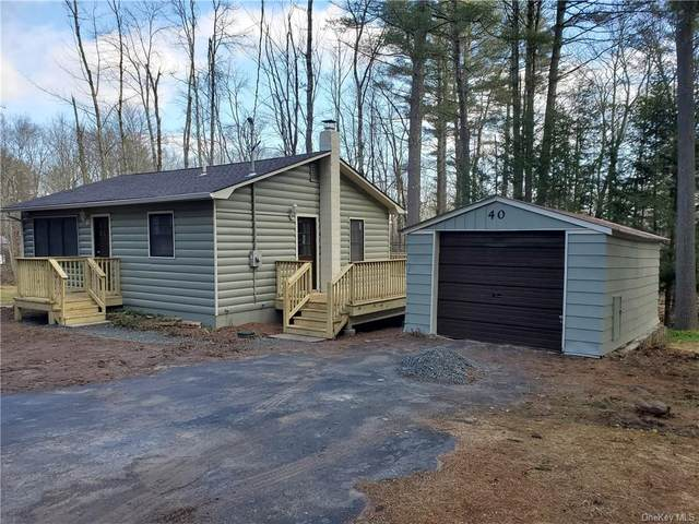 40 Pocahontas Trail, Bethel, NY 12720 (MLS #H6032223) :: Cronin & Company Real Estate