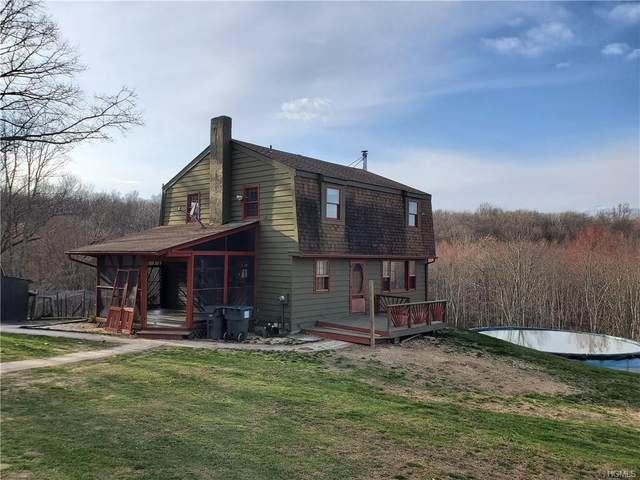 57 Boorman Road, Wallkill Town, NY 10940 (MLS #H6032236) :: Mark Boyland Real Estate Team