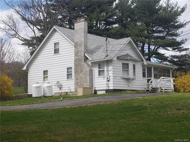 117 S Kaisertown Road, Montgomery Town, NY 12549 (MLS #H6032691) :: Cronin & Company Real Estate