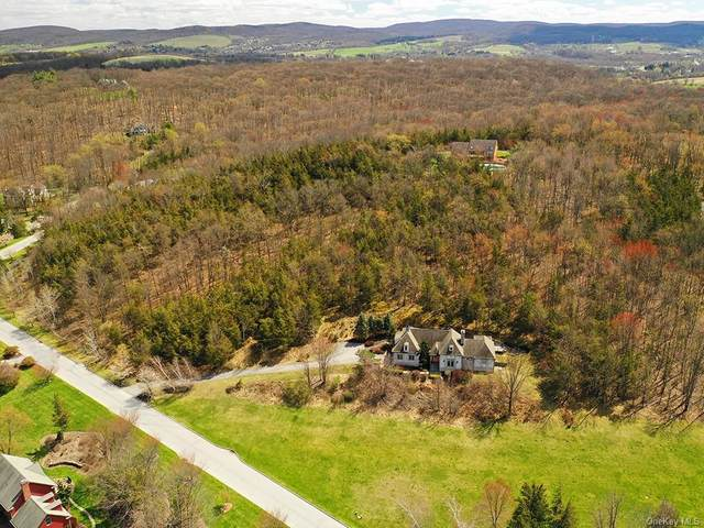 8 Silo Lane, Warwick Town, NY 10990 (MLS #H6034083) :: William Raveis Legends Realty Group