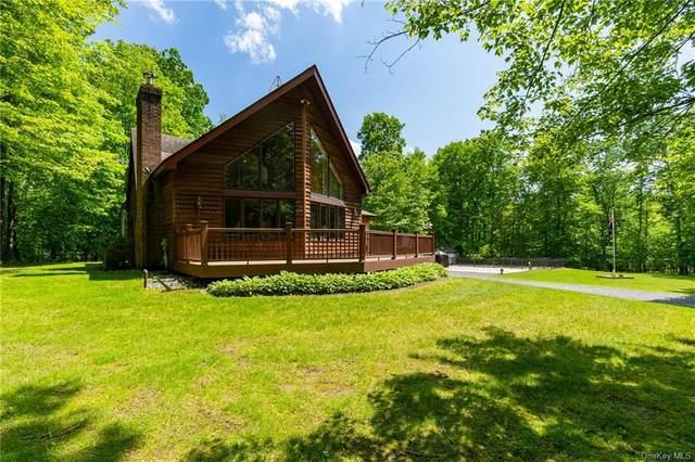 1518 Indian Springs Road, Shawangunk, NY 12566 (MLS #H6034354) :: Cronin & Company Real Estate
