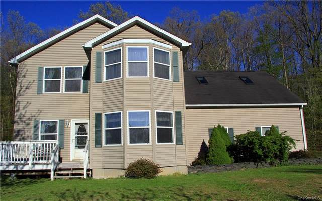 342 Route 284, Minisink, NY 10998 (MLS #H6034552) :: Cronin & Company Real Estate
