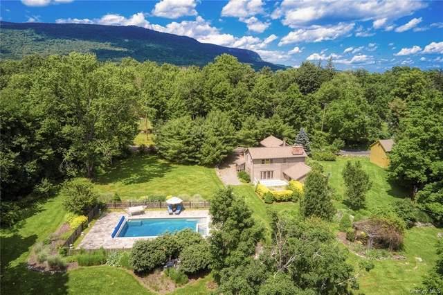 409 Decker Road, Gardiner, NY 12589 (MLS #H6034556) :: Cronin & Company Real Estate