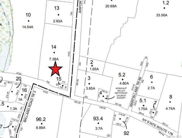 Nys Hwy 17B, Bethel, NY 12720 (MLS #H6034606) :: Cronin & Company Real Estate