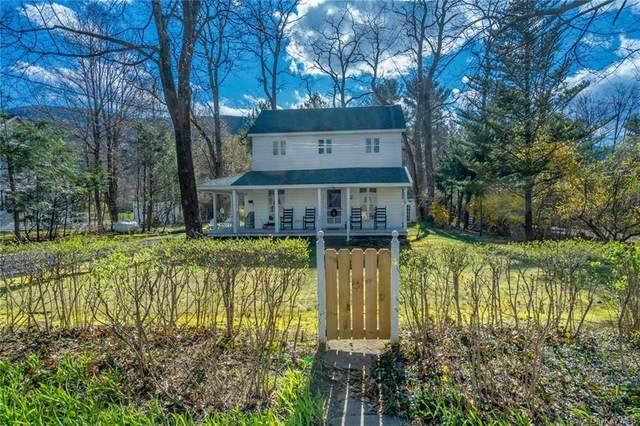 23 Mount Pleasant Road, Shandaken, NY 12457 (MLS #H6035040) :: Mark Boyland Real Estate Team