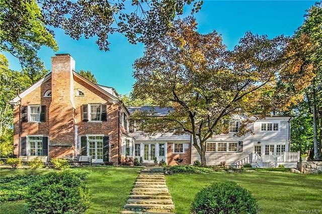 41 N Broadway D, Greenburgh, NY 10533 (MLS #H6035058) :: Cronin & Company Real Estate