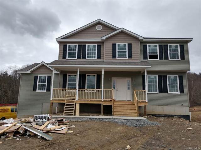 483 Black Meadow Road, Chester Town, NY 10918 (MLS #H6035069) :: Cronin & Company Real Estate