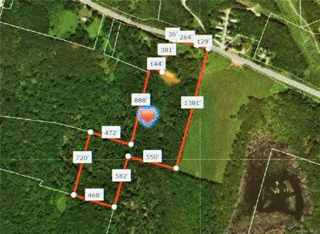 Nys Route 52, Liberty Town, NY 12754 (MLS #H6035384) :: William Raveis Legends Realty Group