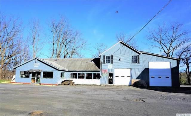 80 Maple Avenue, Catskill, NY 12414 (MLS #H6035601) :: Kendall Group Real Estate | Keller Williams