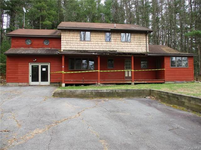 45 Proctor Road, Highland, NY 12732 (MLS #H6035754) :: William Raveis Legends Realty Group