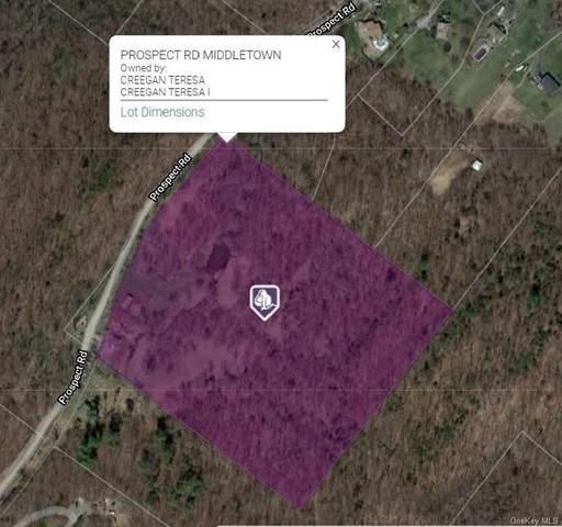 Prospect Road, Wallkill Town, NY 10941 (MLS #H6035886) :: The McGovern Caplicki Team