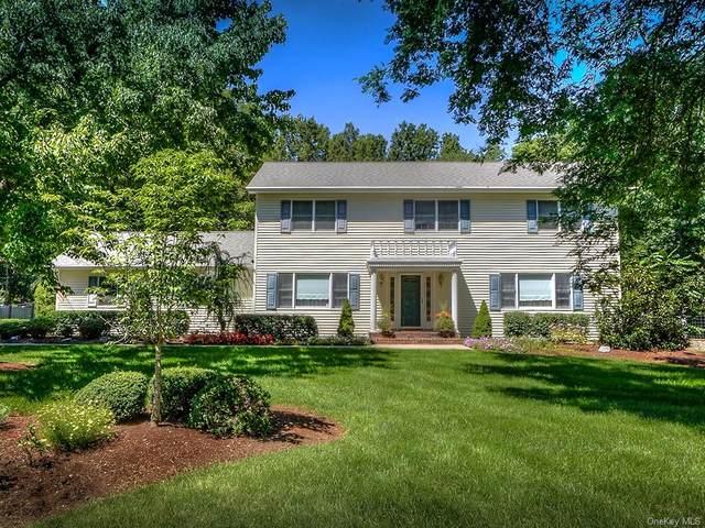 8 Ridgeview Terrace, Goshen Town, NY 10924 (MLS #H6036023) :: Cronin & Company Real Estate