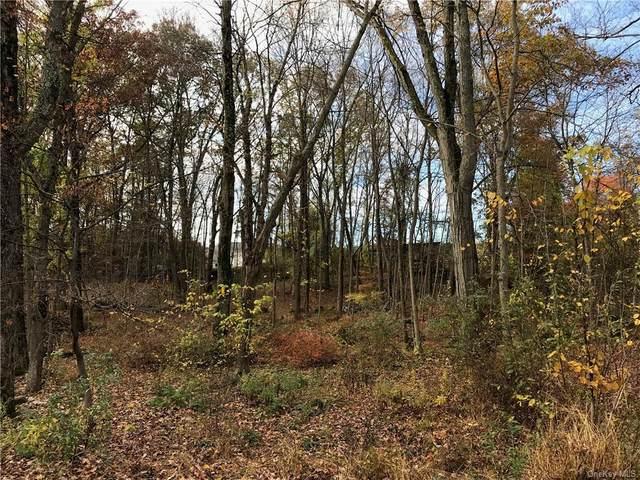 Sunlit Trail, Cortlandt Manor, NY 10567 (MLS #H6036039) :: Mark Seiden Real Estate Team