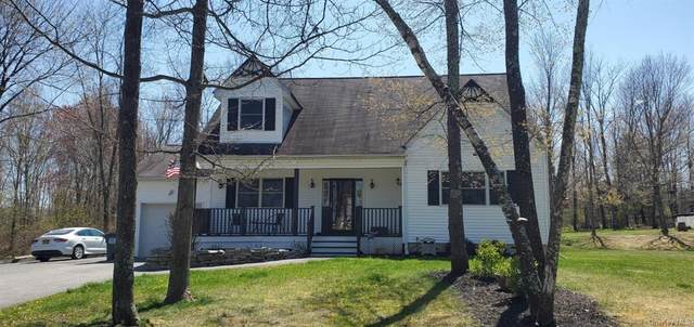 45 Edmunds Lane, Crawford, NY 12566 (MLS #H6036870) :: Cronin & Company Real Estate