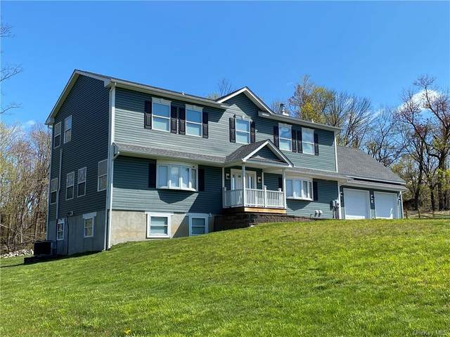 225 Bedford Lane, Fishkill, NY 12524 (MLS #H6037479) :: Cronin & Company Real Estate