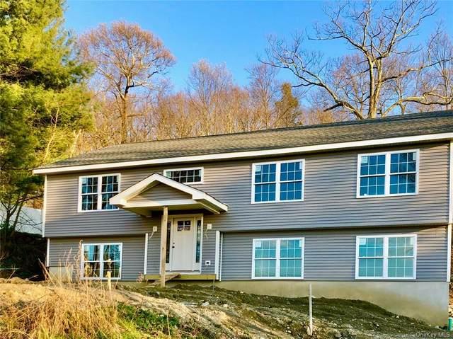 1447 Delaware Road, Yorktown, NY 10547 (MLS #H6037529) :: Cronin & Company Real Estate