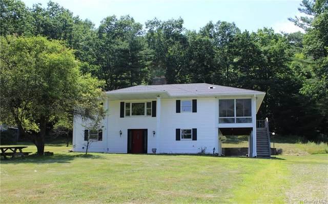 547 Lake, Pine Plains, NY 12567 (MLS #H6037554) :: William Raveis Legends Realty Group