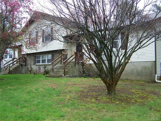 305 Goodwill, Montgomery Town, NY 12549 (MLS #H6037635) :: Cronin & Company Real Estate