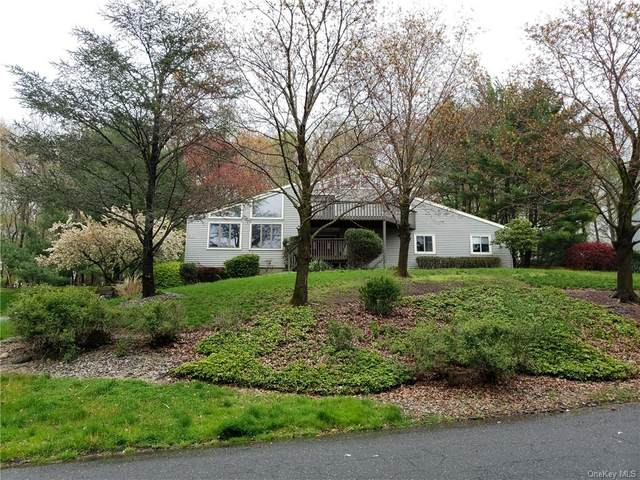 213 Waters Edge, Clarkstown, NY 10989 (MLS #H6037788) :: Signature Premier Properties