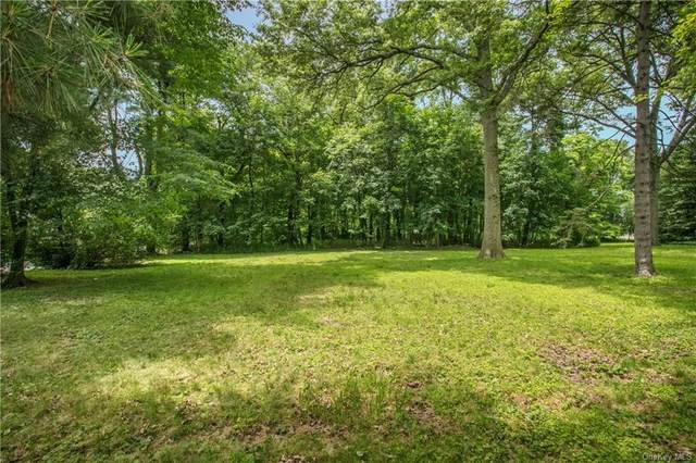 Severn Street (Corner Of Dorchester Road), Scarsdale, NY 10583 (MLS #H6037821) :: Frank Schiavone with William Raveis Real Estate