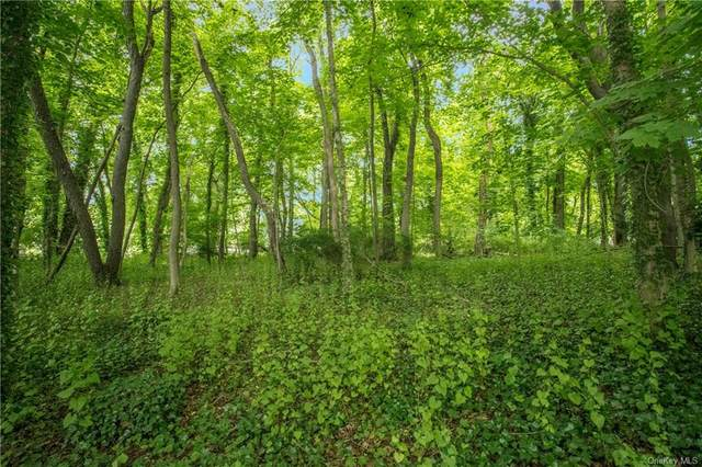 Severn Street (Corner Of Baraud Road), Scarsdale, NY 10583 (MLS #H6037822) :: Frank Schiavone with William Raveis Real Estate