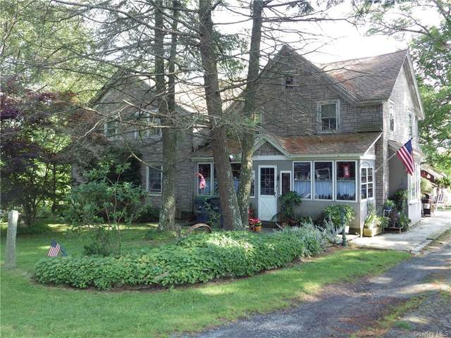797 County Route 164, Delaware, NY 12723 (MLS #H6037828) :: Signature Premier Properties