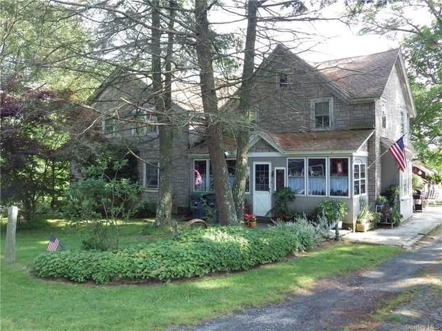 797 County Route 164, Delaware, NY 12723 (MLS #H6037828) :: Cronin & Company Real Estate