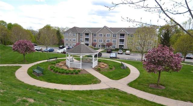 1103 Jacobs Hill Road, Cortlandt, NY 10567 (MLS #H6037929) :: Mark Seiden Real Estate Team