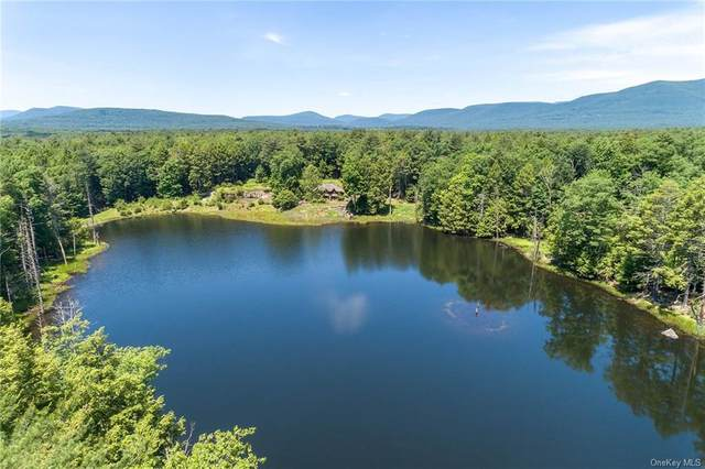 Eastwoods Drive, Woodstock, NY 12498 (MLS #H6038190) :: McAteer & Will Estates | Keller Williams Real Estate