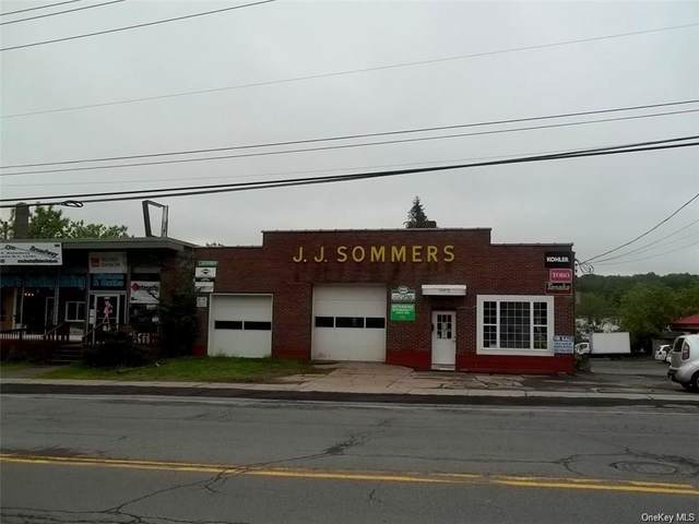 365 E Broadway, Thompson, NY 12701 (MLS #H6038411) :: Cronin & Company Real Estate
